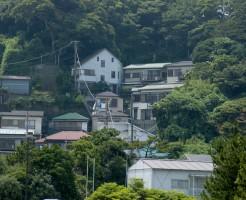 森林浴関東