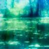 森林浴とは?マイナスイオンの効果でストレスを軽減!