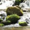 森林浴の森100選に選ばれた森林浴の森をご紹介します!④